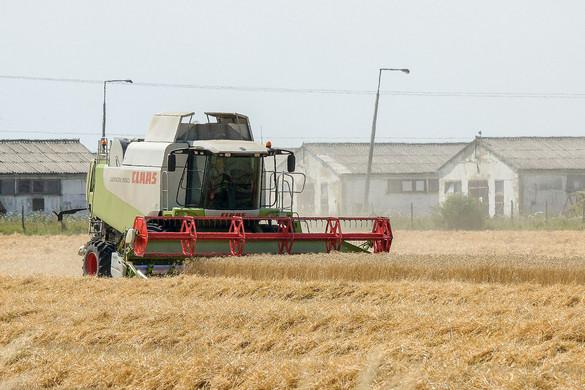 Modernizáció és gazdálkodás