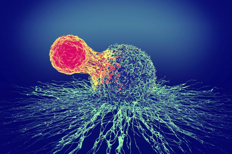 Ráksejt és T-sejt illusztrációja