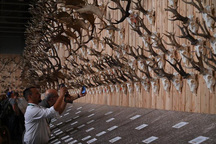 Színes programkínálattal várják a látogatókat a Vadászati Világkiállítás nyitóhétvégéjén