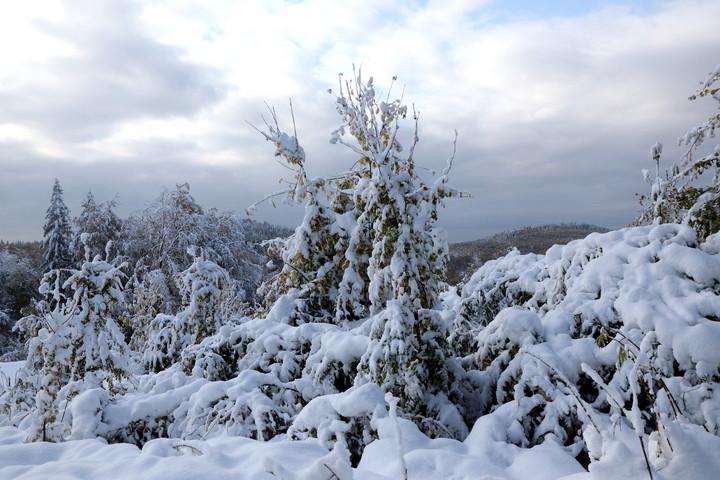 Óriási hóesés volt a Bükkben