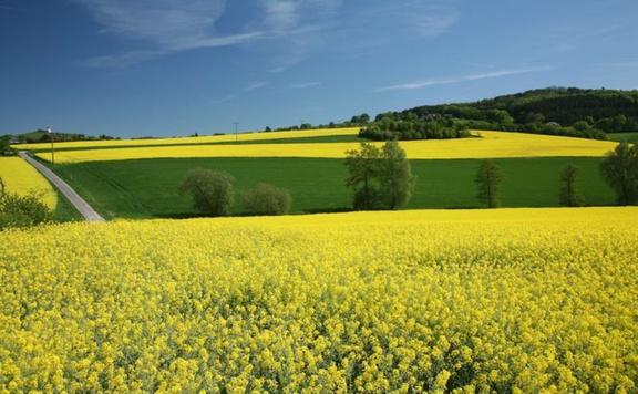A gazdák megbecsülését és a vidék megújítását segíti a jövő évi büdzsé