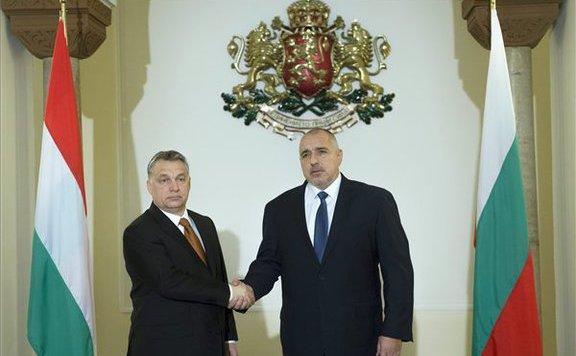 orbán szófia lead