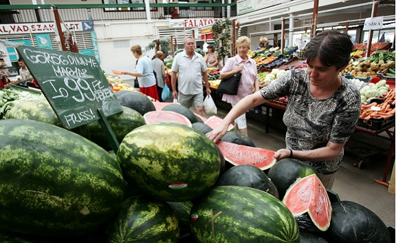 """""""A dinnyepiaci helyzet nem indokolja a felelőtlen áruházi akciókat"""""""