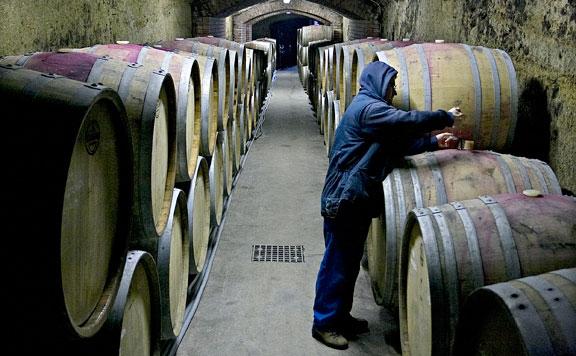 Magyar borokat népszerűsítő programot indít a kormány