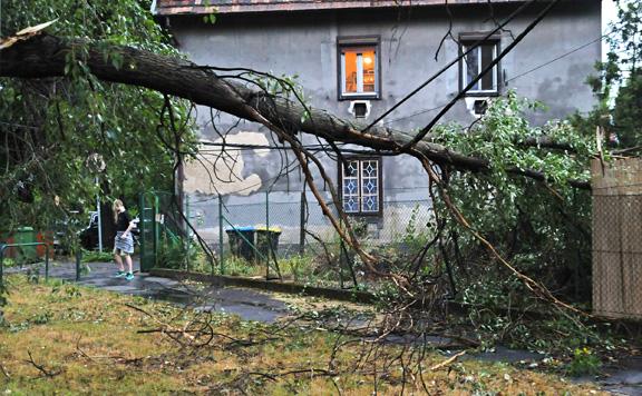 Az idén 6,6 milliárd forintot fizethetnek ki a viharkárokra a biztosítók