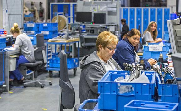 Három évtizedes csúcson a foglalkoztatás szintje