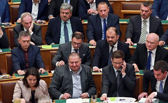 Fidesz 20190115